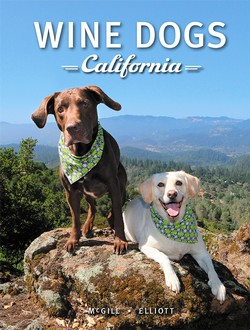 Wine Dogs California 3